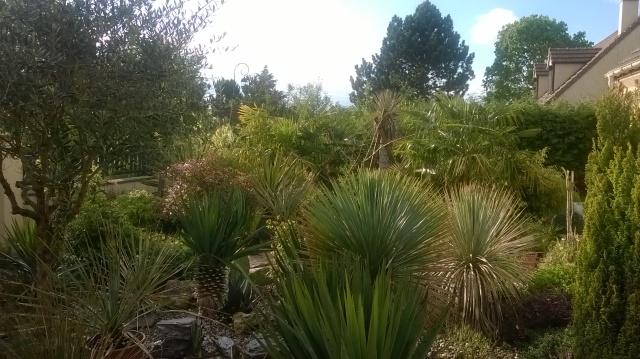 Jardin de Greg en Seine et marne 16593010