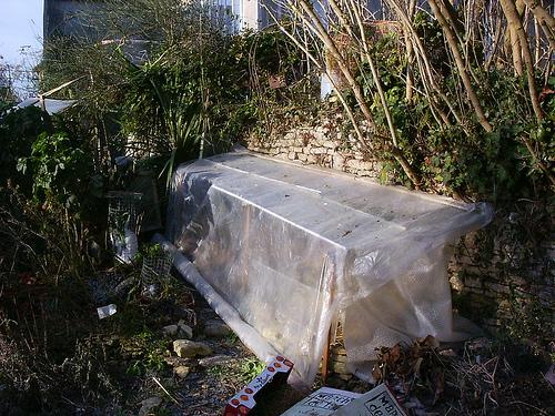 Mon jardin sur le littoral normand 31847510
