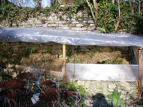 Mon jardin sur le littoral normand 31855910
