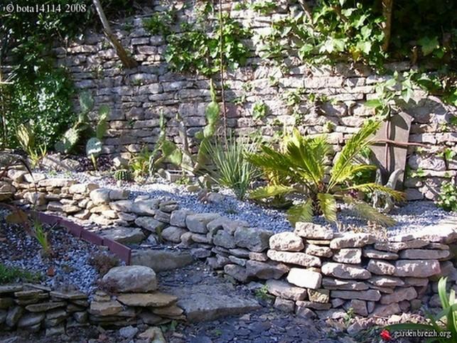 Mon jardin sur le littoral normand 31875310