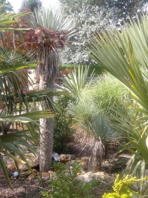 Jardin de Greg en Seine et marne 78273910