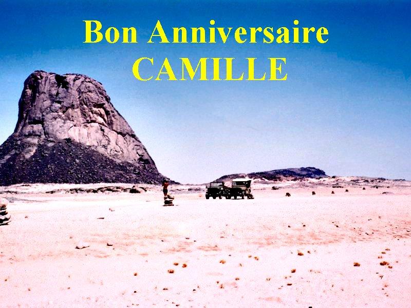bon anniversaire Camille - Page 3 Acamil10