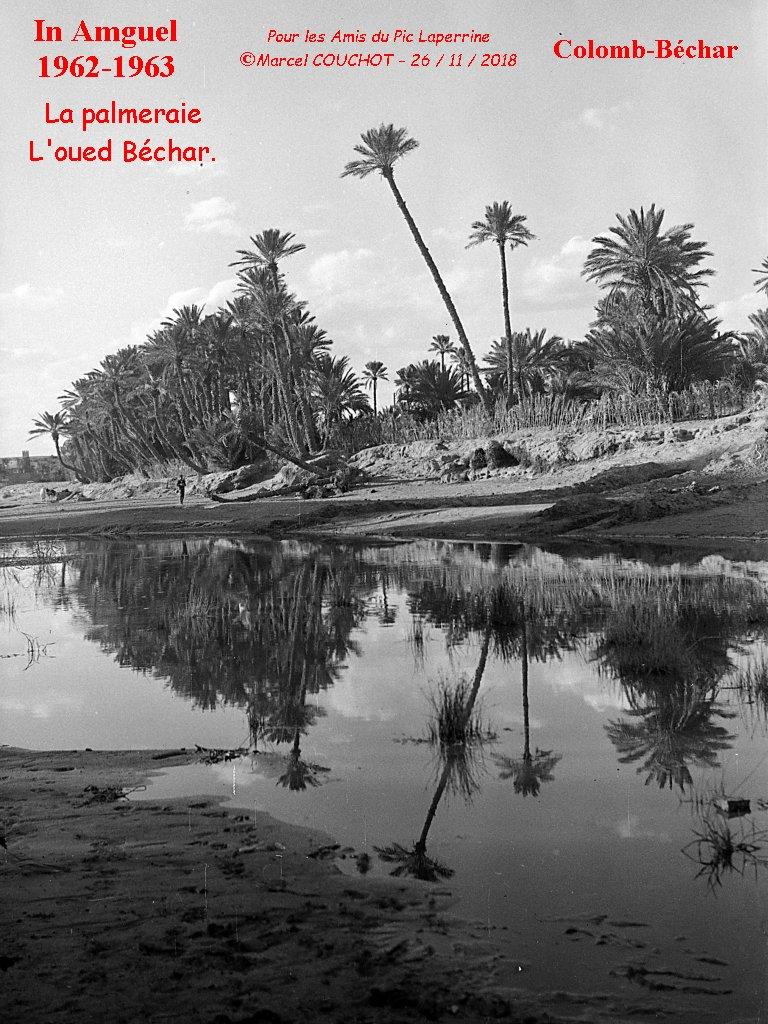 Un livre qui pourrait vous interesser Bechar10