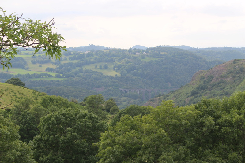 Vallée de la Petite Rhue - Marchastel  Img_8333