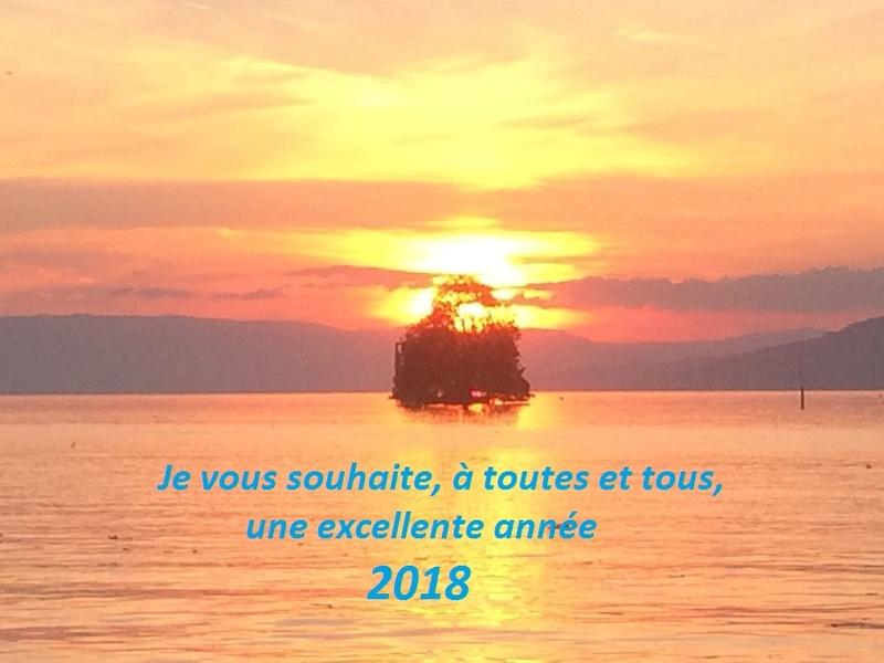 Bonjour / Bonsoir de Janvier 2018 Voeux_10