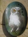 ER majestic owl by Emily Rhind, Islay Dan_pi20