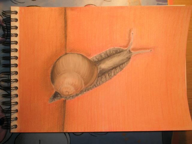 Escargot P2180014