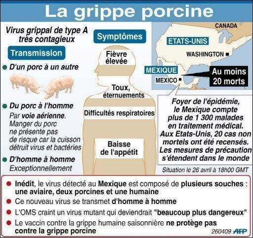 Grippe porcine!!! Grippe10
