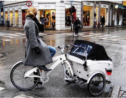 Bicicletas de CARGA??? Ccb_210