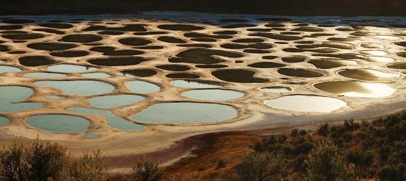 Spotted Lake - Colombie Britannique - Canada 41901410
