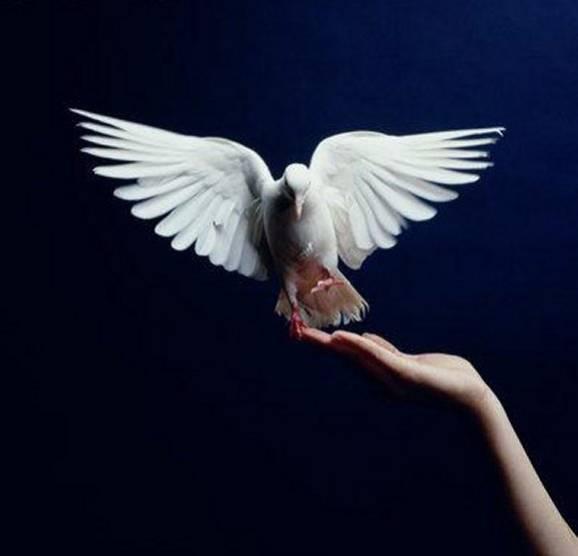 prière de degagement et de purification Fowtlj10