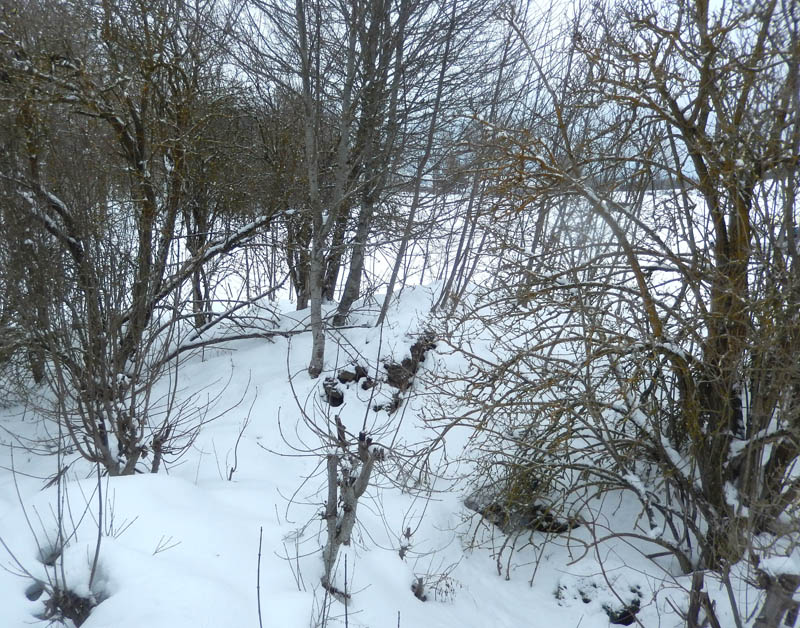 Encore de la neige ................... ? 2018-714