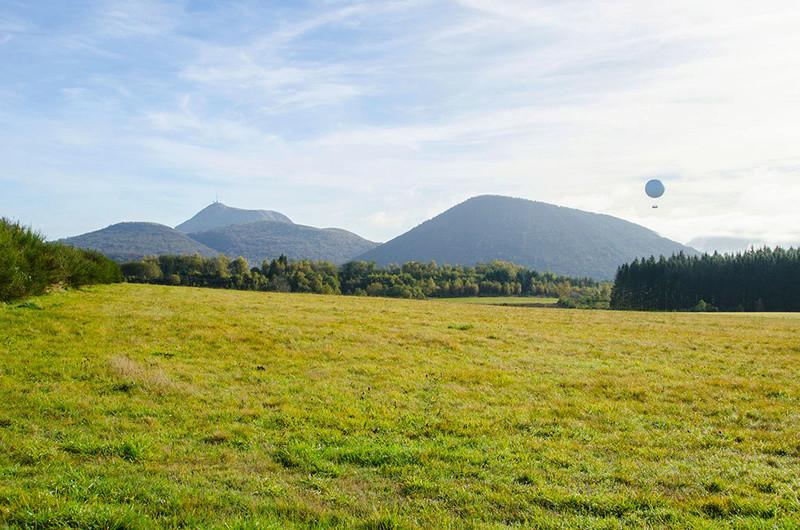 Parc des Volcans d'Auvergne Dsc_8510