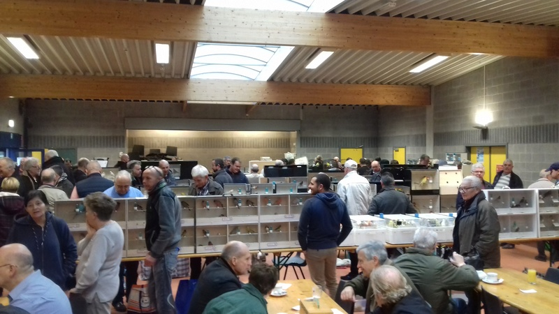 Bourse de Hamoir 20171140