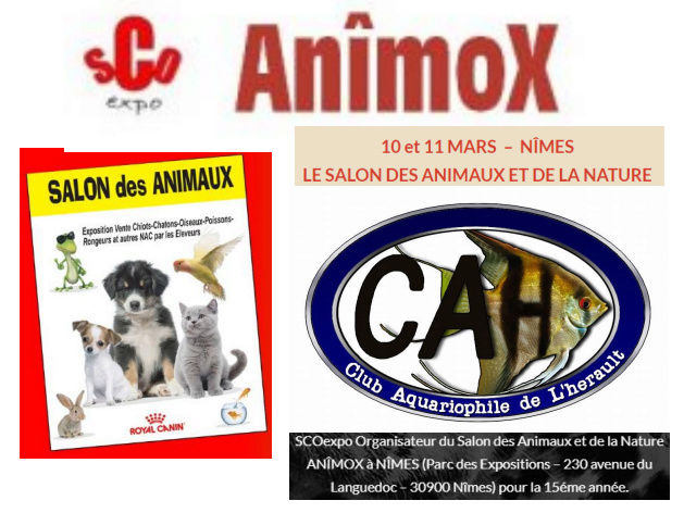 Salon des animaux et de la nature a Nîmes  Salon_10
