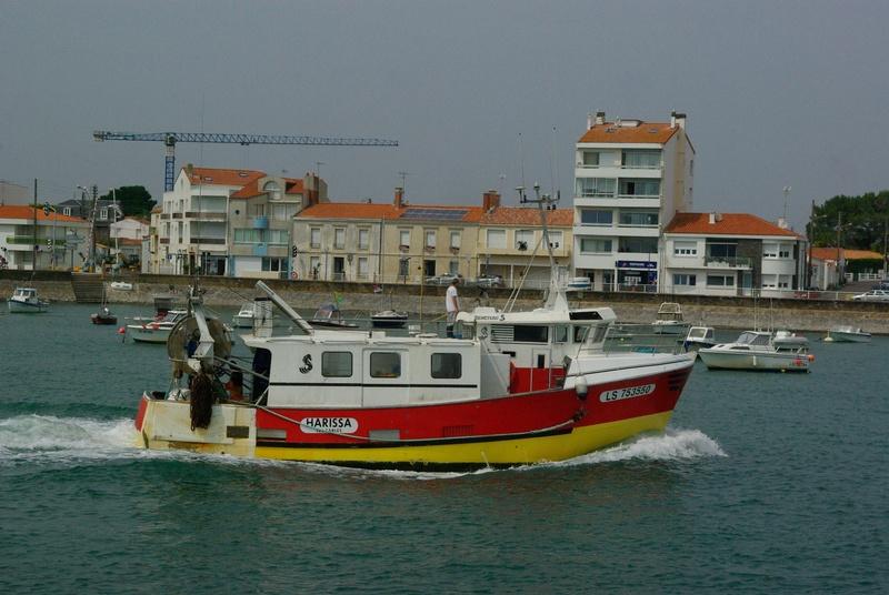 [VIE DES PORTS] Quelques bateaux de pêche (sur nos côtes Françaises) - Page 39 _igp3410
