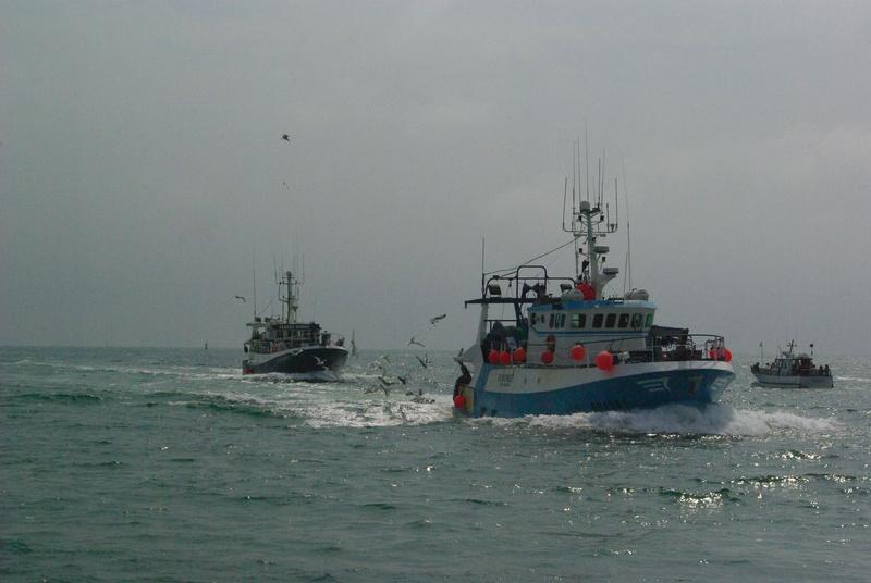 [VIE DES PORTS] Quelques bateaux de pêche (sur nos côtes Françaises) - Page 39 _igp3411