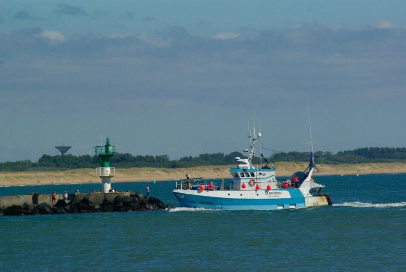 [VIE DES PORTS] Quelques bateaux de pêche (sur nos côtes Françaises) - Page 37 _igp3510