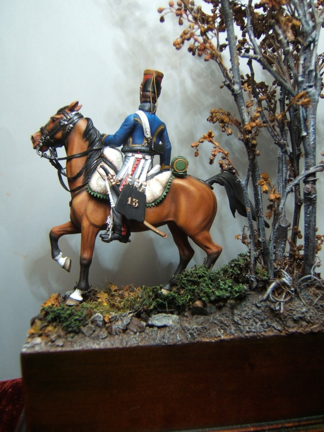 cavalier hussard Dscf2117
