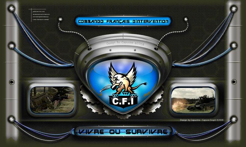 Commando Français d'Intervention