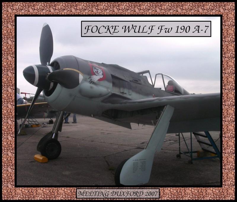 Fw-190 de FlugWerk Project Photo_12