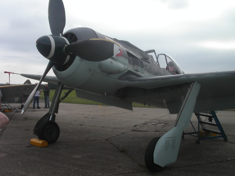 Fw-190 de FlugWerk Project Photo_18