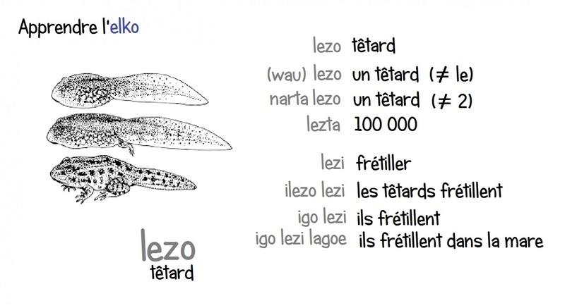Elko - Fiches illustrées - Page 5 Lezo10