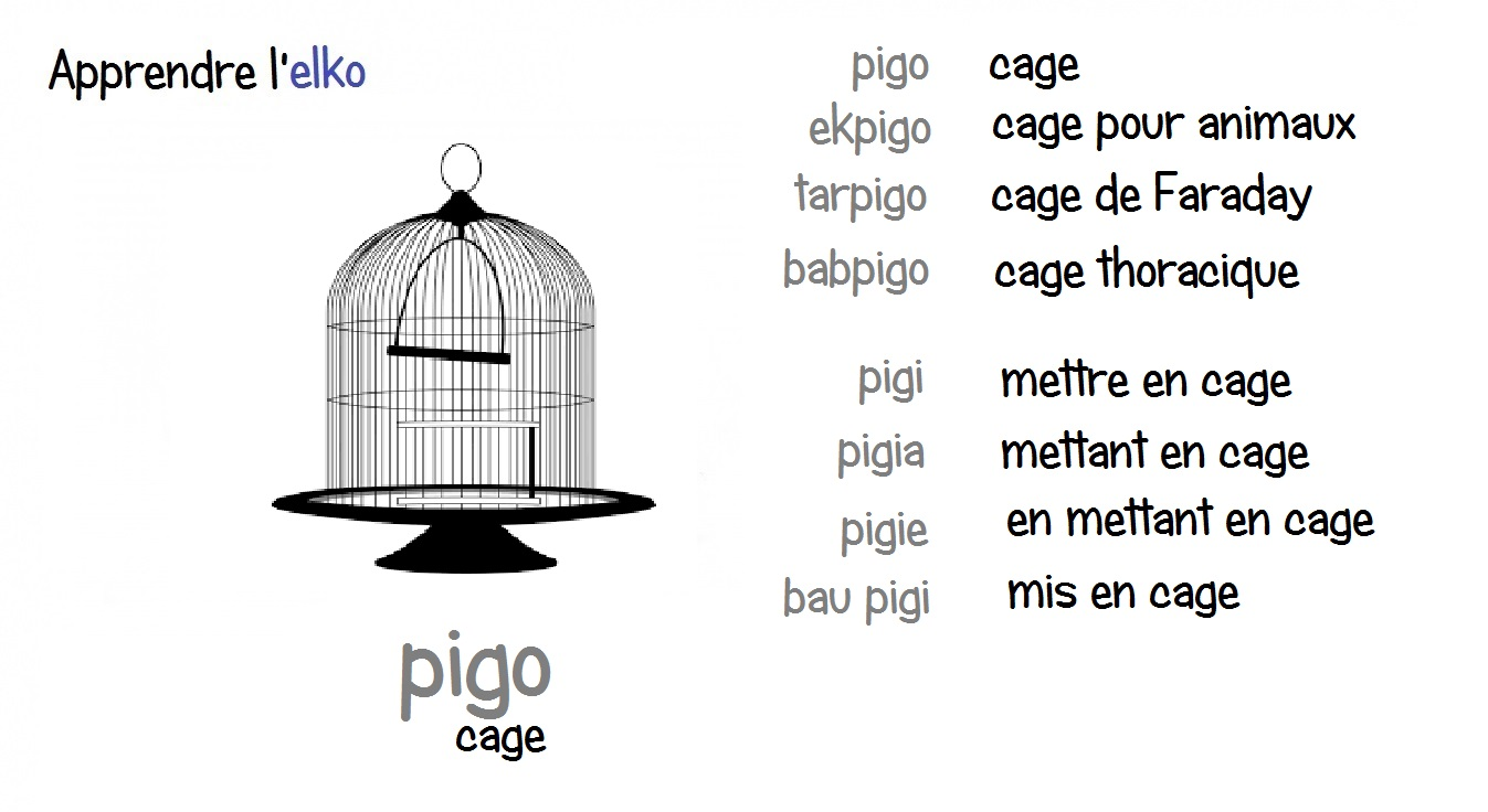 Elko - Fiches illustrées - Page 8 Pigo10