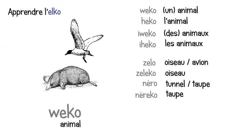 Elko - Fiches illustrées - Page 6 Weko10