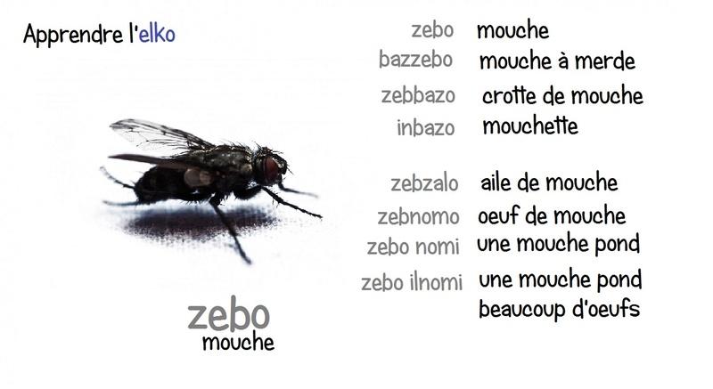 Elko - Fiches illustrées - Page 7 Zebo10