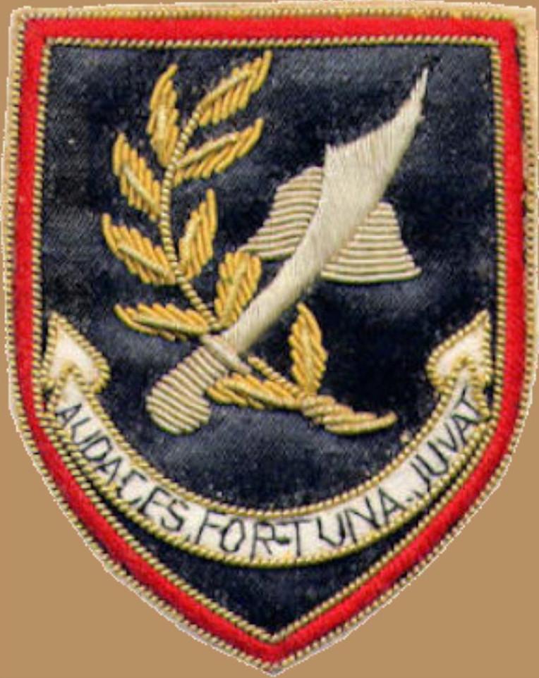 Faleceu o veterano José Manuel Rodrigues, 1.º Cabo 'CMD', do GrCmds «GATOS»/BArt400 - 02Mar2018 Cracha17