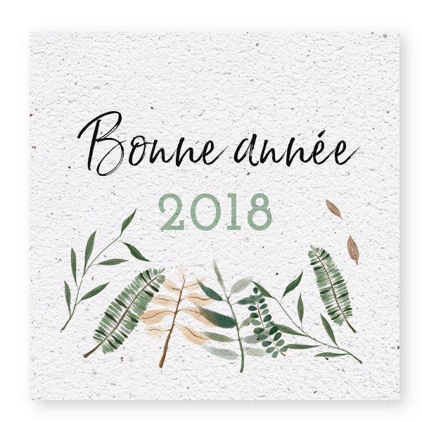 Janvier 2018 Bonne-10