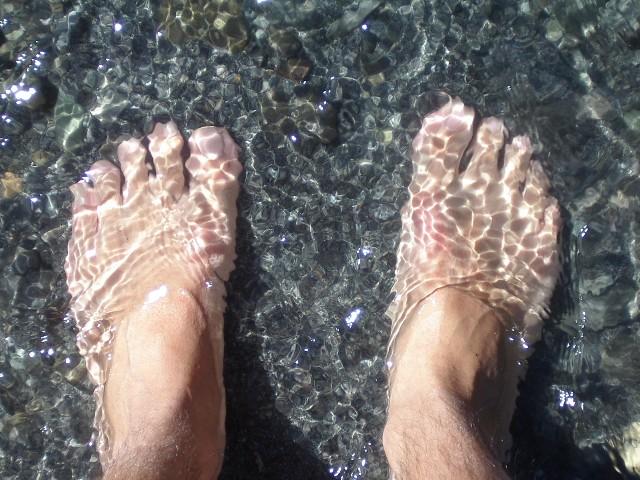 Trombi-pieds Charli11