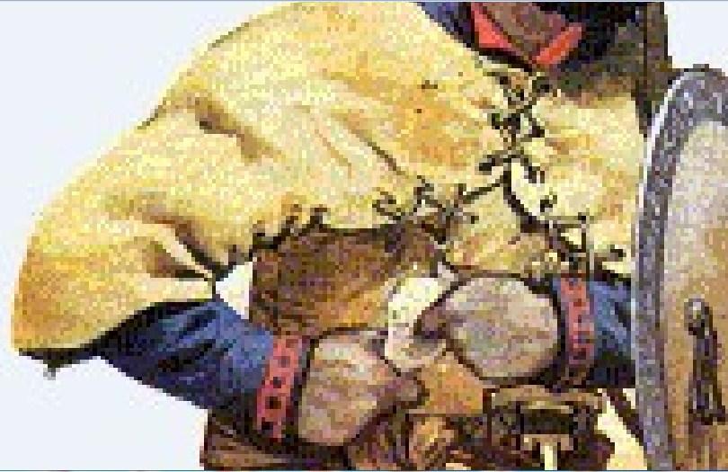 Protección de cuero Beato de Liébana 414