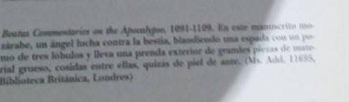 Protección de cuero Beato de Liébana 813