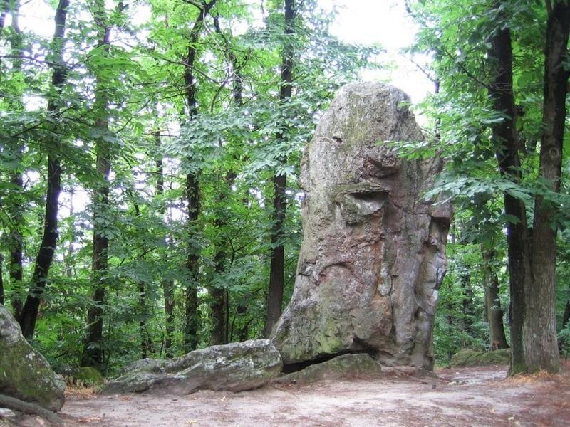 Les roches qui dansent - Saint-Barthélémy-de-Vals Lesroc10
