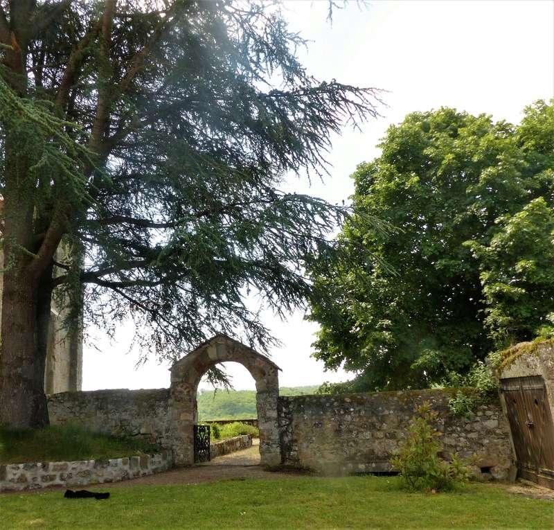 le jardin de l'abbaye en 2018 - Page 5 P1030544