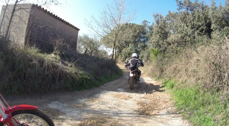 1ª Kdd del año....Vilanova i La Geltru G0016711