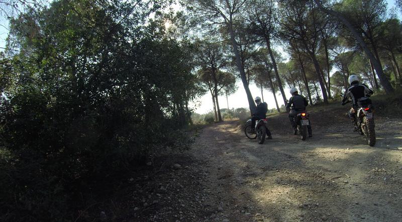 1ª Kdd del año....Vilanova i La Geltru G0026814