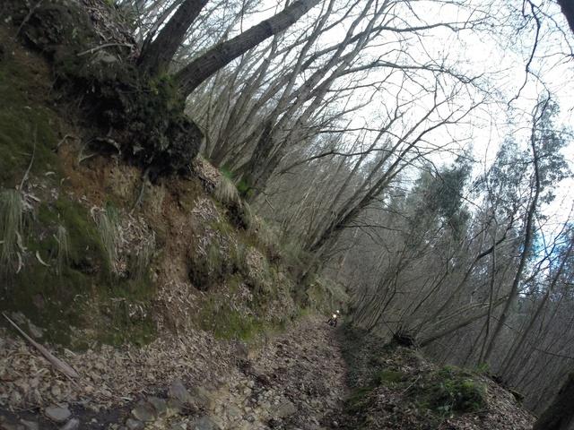 Ruta Asturias Whatsa14
