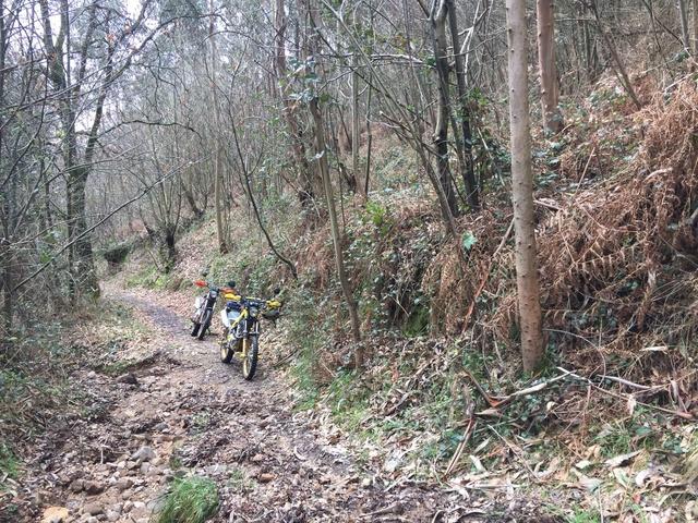 Ruta Asturias Whatsa16