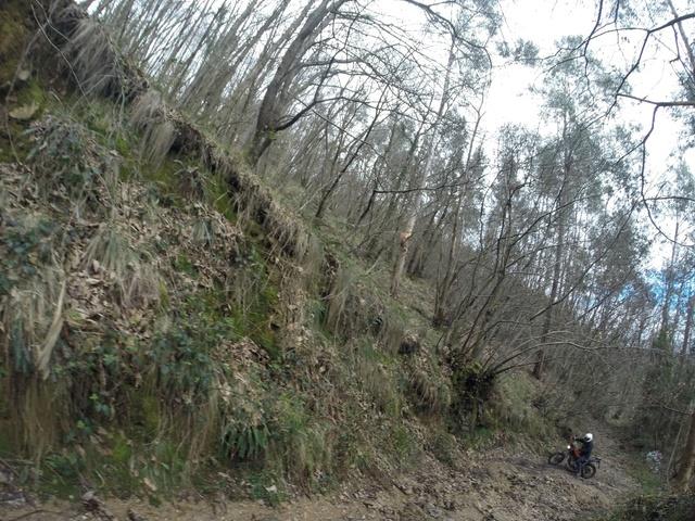Ruta Asturias Whatsa18