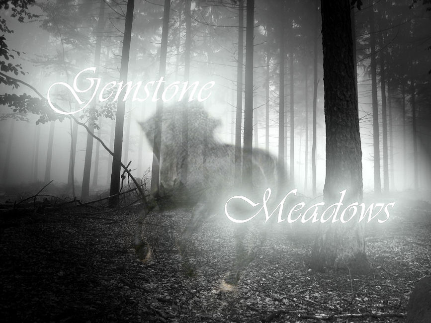 Gemstone Meadows