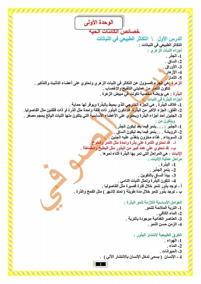 الوسم نتائج_الامتحانات_الوزارية على المنتدى نتائج الامتحانات الوزارية فى العراق نتائج السادس الابتدائى 2019 163