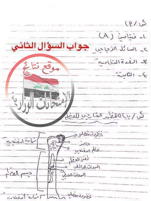 حل أسئلة امتحان الأحياء الوزارى للثالث المتوسط 2018 الدور الأول  342