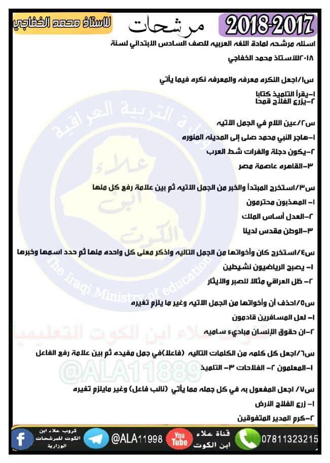 مرشحات الاستاذ محمد الخفاجى للغة العربية الصف السادس الابتدائى 2019 519