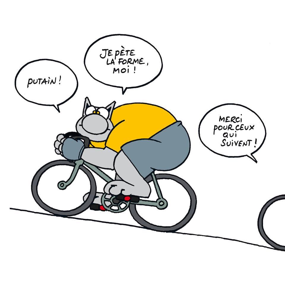 Le chat - Page 5 11745810