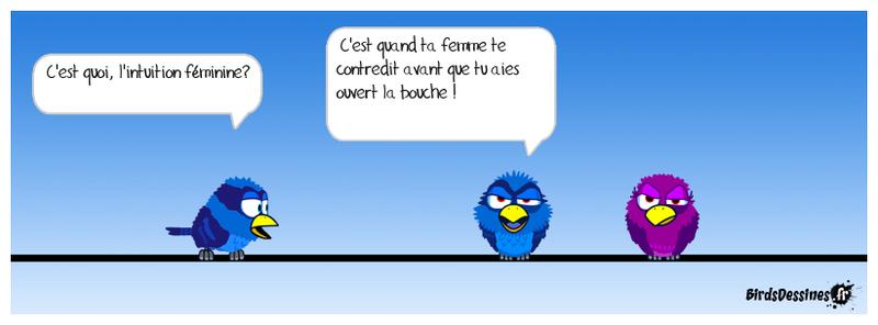 Les Birds - Page 10 37970910
