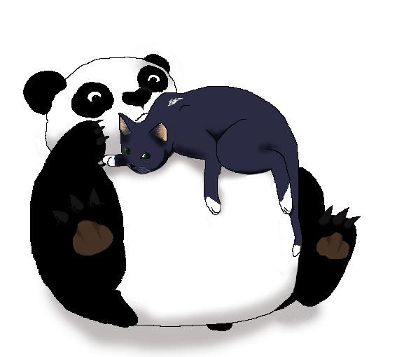 Le savoir inutile du jour - Page 2 Panda-10