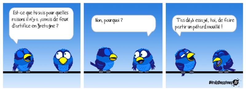 Les birds Trad-310